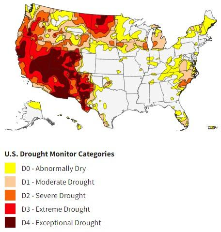 Штаты Калифорния и Невада переживают суровую засуху